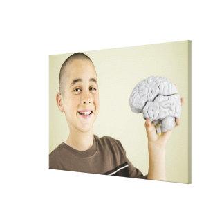 Muchacho que lleva a cabo el modelo del cerebro hu lienzo envuelto para galerías