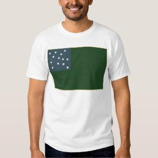 Muchachos verdes de la montaña y la bandera de la camisas