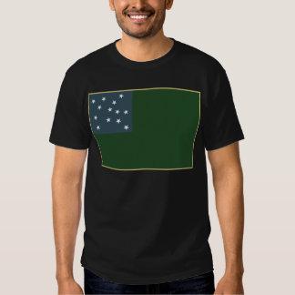 Muchachos verdes de la montaña y la bandera de la playeras