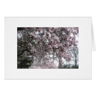 Muchas magnolias tarjeta de felicitación