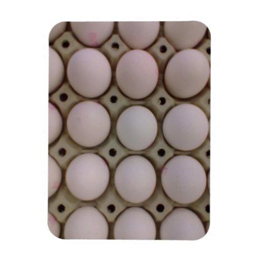 Muchos huevos imanes flexibles