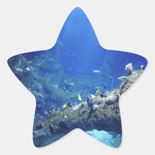 Muchos peces de mar pegatina en forma de estrella