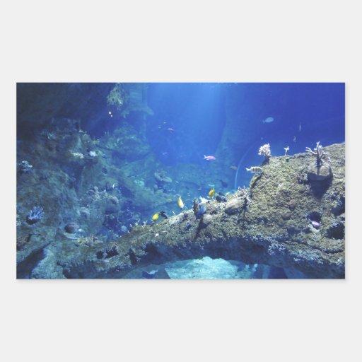 Muchos peces de mar rectangular altavoces