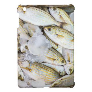 Muchos pequeños pescados muertos cogidos con hielo