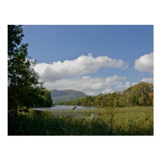 Muckross Lake Postcard