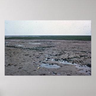 Mud Flat in Virginia Posters