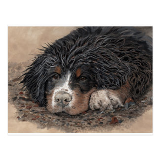 Mud Magnet Post Card