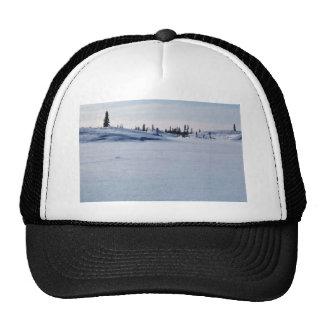 Mud River Drainage in Winter Trucker Hat