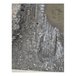 Mud surface with some water postcard