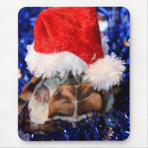 Mud turtle with head covered in santa hat mouse pad