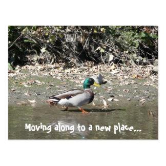 Mudanza adelante a un nuevo lugar… postal