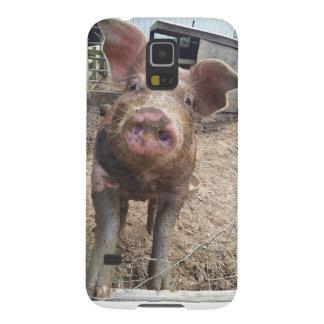 muddy dirty funny pig samsung galaxy case