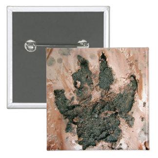 Muddy Dog Print 2 Button