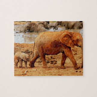 Muddy Mother and Calf Elephant Puzzle