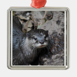 Muddy Otter Christmas Ornament