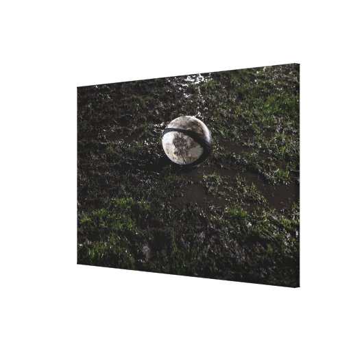 Muddy rugby ball sitting on a chewed up grass gallery wrap canvas