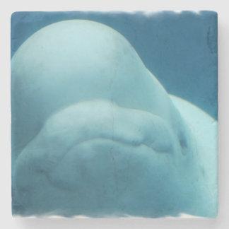 Mueca de la ballena de la beluga posavasos de piedra