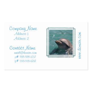 Mueca de tarjetas de visita del delfín