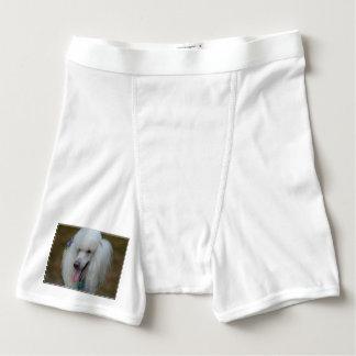 Mueca del caniche estándar blanco boxers