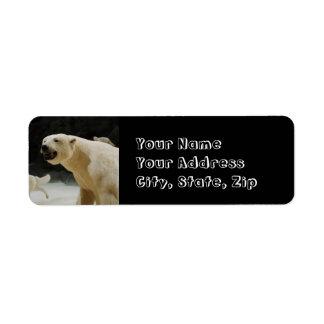 Mueca del oso polar etiqueta de remite