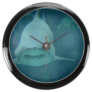 Mueca del tiburón reloj aquavista