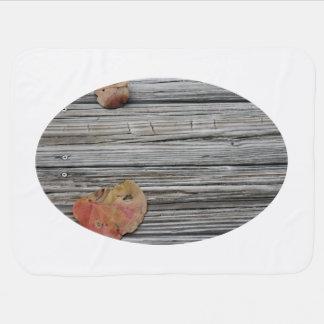 muelle de madera de dos hojas del seagrape manta de bebé