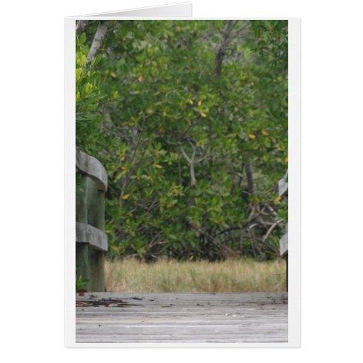 Muelle que lleva en soporte verde del mangle tarjetas