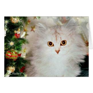 Muérdago la tarjeta de Navidad de plata del gato
