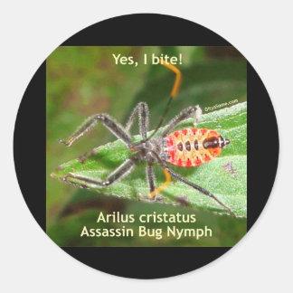 Muerdo sí el insecto de asesino pegatina redonda
