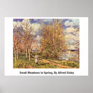 Mueren los pequeños prados en primavera, por póster