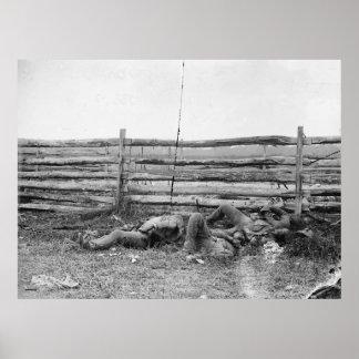 Muertos de la brigada Hagerstown Pike de Stonewall Póster