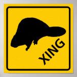 Muestra de la carretera de la travesía del castor impresiones