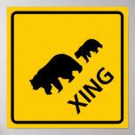 Muestra de la carretera de la travesía del oso posters