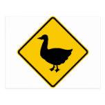 Muestra de la carretera de la travesía del pato tarjeta postal