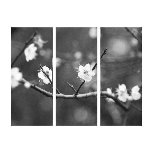 Muestra de la primavera/de la fotografía oriental  impresiones en lona estiradas
