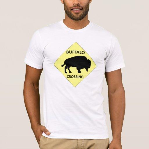 Muestra de la travesía del búfalo playera