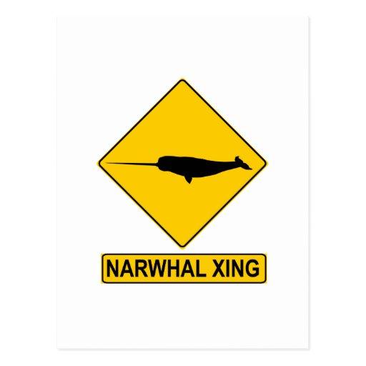 Muestra de Narwhal X-ing Tarjeta Postal