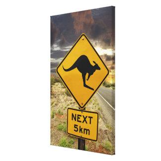 Muestra del canguro, Australia Impresión En Lienzo