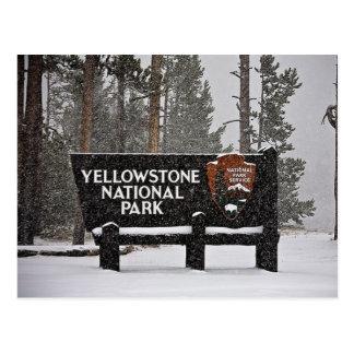 Muestra del parque nacional de Yellowstone Tarjeta Postal