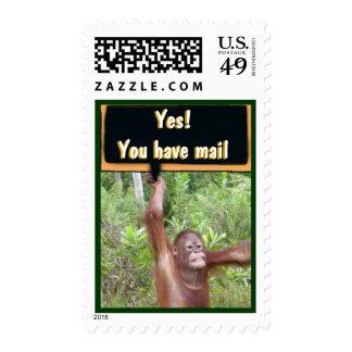 Muestra del piquete de la celebración del correo sellos