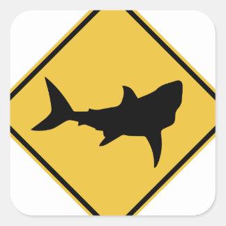 Muestra del tiburón pegatina cuadrada