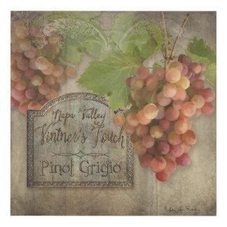 Muestra del viñedo de las uvas n de Napa Valley Cuadro