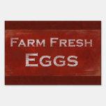 Muestra fresca de los huevos del estilo rústico
