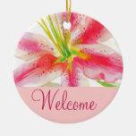 Muestra rosada de la puerta de la recepción del adorno redondo de cerámica