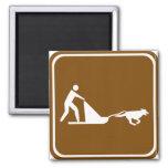 Muestra sledding de la carretera del perro imán