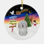 Muestras de Navidad - algodón de Tulear #3 Adornos De Navidad