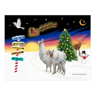 Muestras de Navidad - mamá Llama y bebé Postal