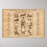 Muestras del vintage 12 del zodiaco impresiones