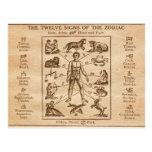 Muestras del vintage 12 del zodiaco tarjetas postales