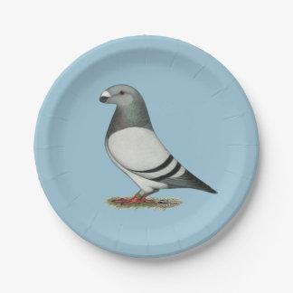 Muestre a corredor la paloma azul de la barra plato de papel de 7 pulgadas